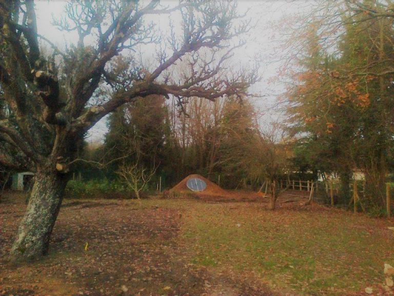 Jesień w ogrodzie piwnica